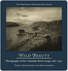 Wild Beauty Book Cover